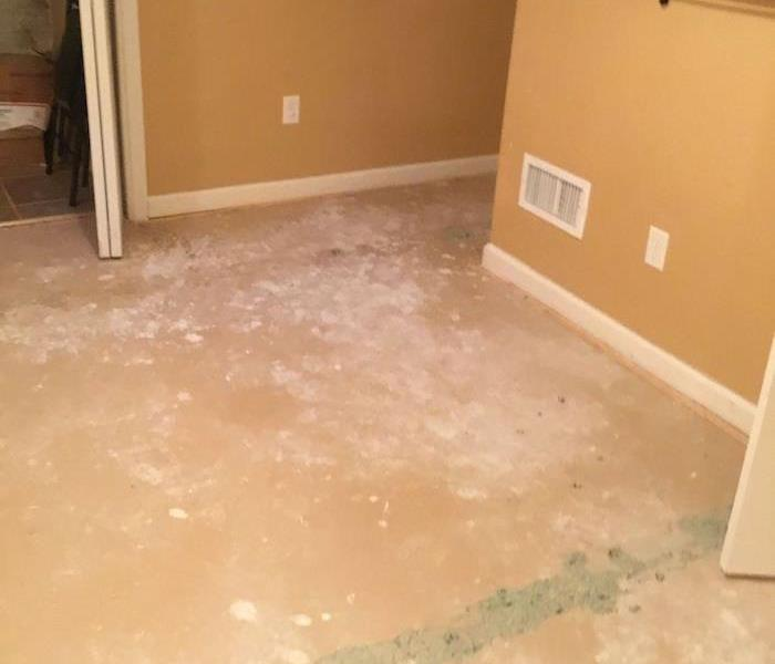 Room with carpet removed and exposed subfloor
