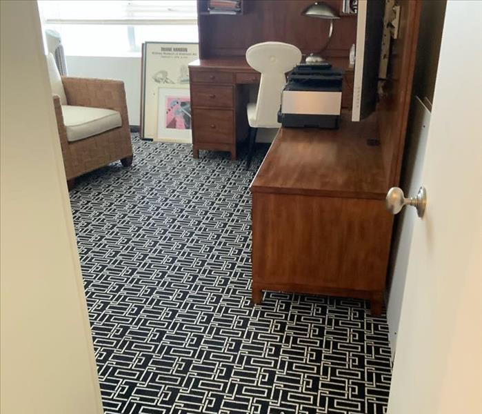Room with black and white carpet and furniture