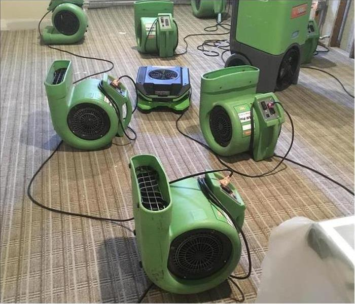 Several of our air movers and dehumidifiers set out on this carpet after a flood