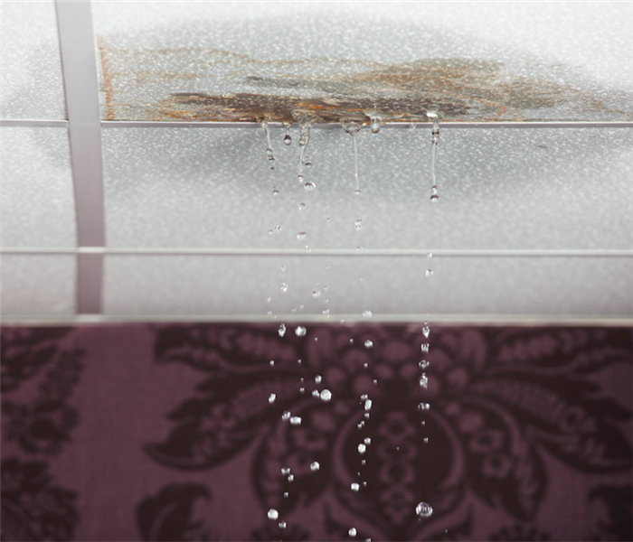 Water Damage Call the Professionals to Handle Water Damage Remediation in Your Closter Residence