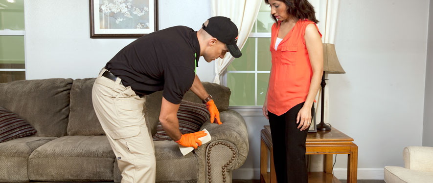Closter, NJ carpet upholstery cleaning