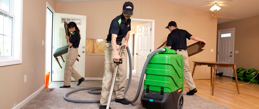 Bergenfield, NJ cleaning services