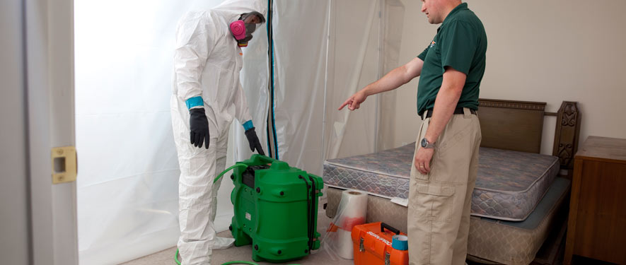Closter, NJ mold removal process